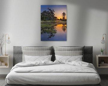 Rustige wetland bij zonsopgang met oranje hemel van Tony Vingerhoets