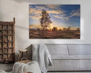Oranje Zonsondergang met dramatische wolken en berken tree_1 van Tony Vingerhoets