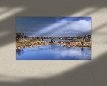 Vue panoramique sur une zone humide contre un ciel bleu nuageux sur Tony Vingerhoets