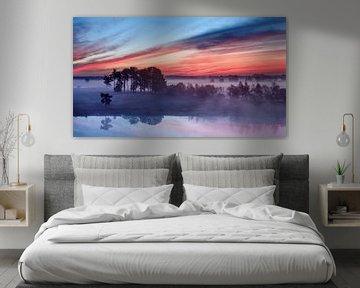 Rode en blauwe hemel tijdens zonsopgang op een mistige wetland_1 van Tony Vingerhoets
