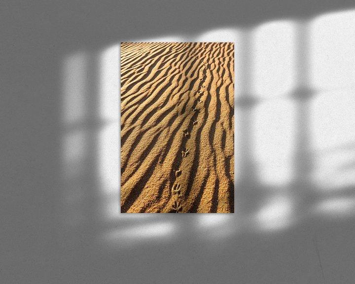 Sfeerimpressie: Sporen in het zand van Wouter van Woensel