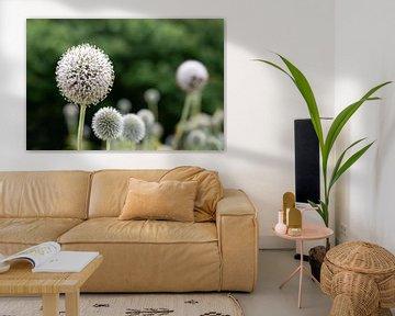 Blumen von Henriette Tischler van Sleen