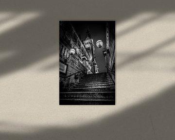 Deutschland, Hamburg, Architektur, Rathaus, schwarz, weiß von Ingo Boelter