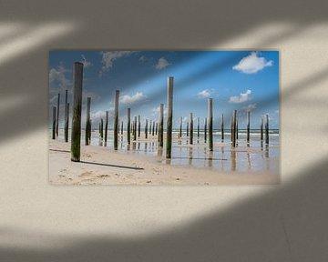 strand petten van klaas zijlstra