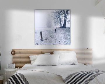 Misty Morning von Martijn Schornagel