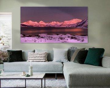 Alpenglow op Sommarøya, Noorwegen van Adelheid Smitt