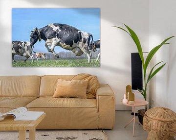 springend koe van Vera van Praag Sigaar