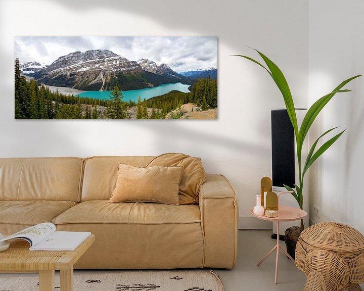 Beispiel: Peyto Lake vom Bow Summit aus gesehen, Banff National Park, Rocky Mountains, Kanada, Nordamerika von Mieneke Andeweg-van Rijn
