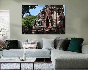 De enige nog staande Boeddha tussen de ruïnes van Highthorn Photography