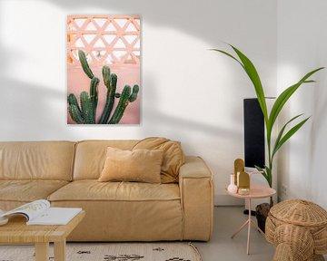 Marokkanischer Druck 'Kaktus an der rosafarbenen Mauer' | Reisefotografie von Yaira Bernabela