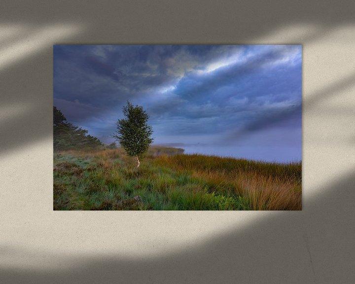 Sfeerimpressie: Berkje in de mist van Anneke Hooijer