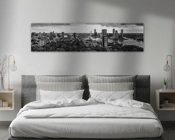 Panorama Rotterdam Euromast Schwarz-Weiss von Vincent Fennis
