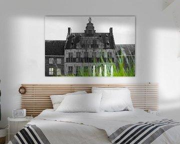 Ziele (Middelburg) von Gerando Sinke Hobbyfotografie