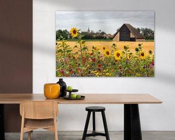 Zonnebloemen bij schapenboet op Texel van Ronald Timmer