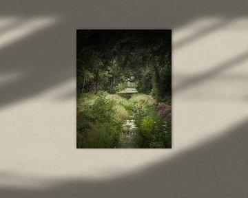 Where the Green Grass Grows van Kees van Dongen