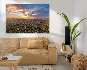 Slufter Texel Sonnenuntergang blühender Seelavendel von Texel360Fotografie Richard Heerschap