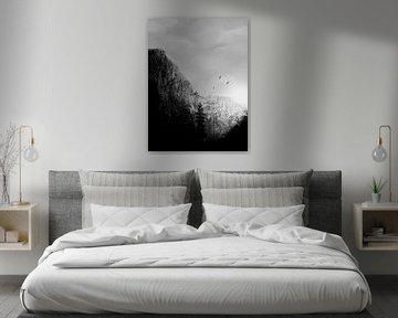 Montagnes noires/blanches sur DominixArt