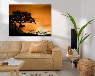 Sonnenuntergang Afrika von DominixArt