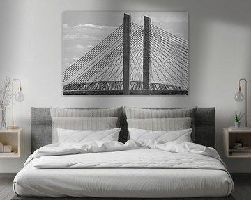 Alte und neue Brücke Zaltbommel von BriGit Stokman