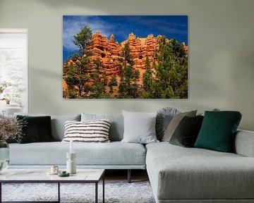 Red Canyon, Utan, USA van Adelheid Smitt