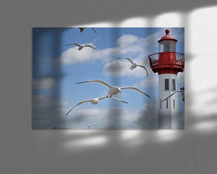 Impression: Les mouettes hareng en vol dans le port sur 7Horses Photography