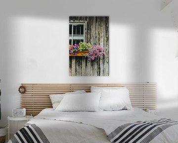 Fleurs sur la maison en bois sur Patrycja Polechonska