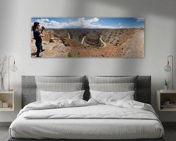 Goose Necks Canyon panoramic view van Lein Kaland