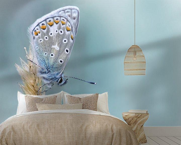 Sfeerimpressie behang: Kind of Blue ... (Vlinder, Zomer, Blauw) van Bob Daalder