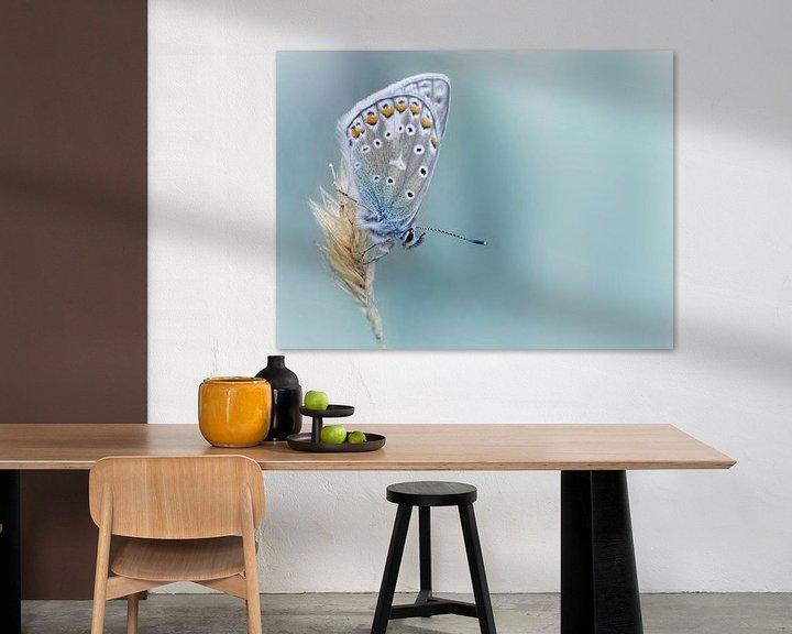 Sfeerimpressie: Kind of Blue ... (Vlinder, Zomer, Blauw) van Bob Daalder