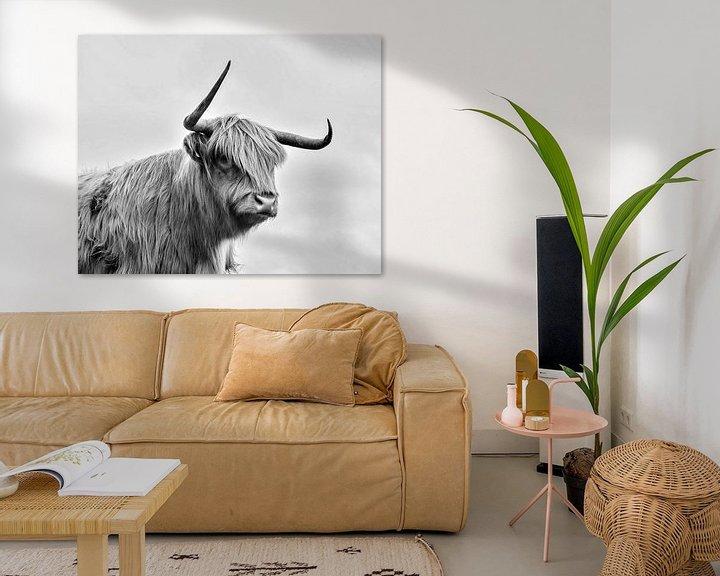 Impression: Highland cow sur PictureWork - Digital artist