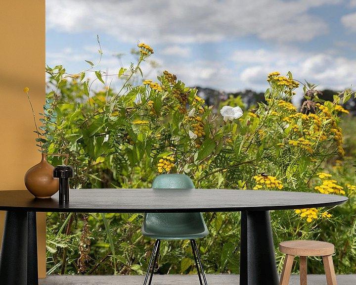 Impression: champ de fleurs de champs jaunes et blanches sur ChrisWillemsen