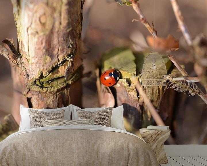 Sfeerimpressie behang: Lieveheersbeestje in de herfst van Jeroen van Breemen