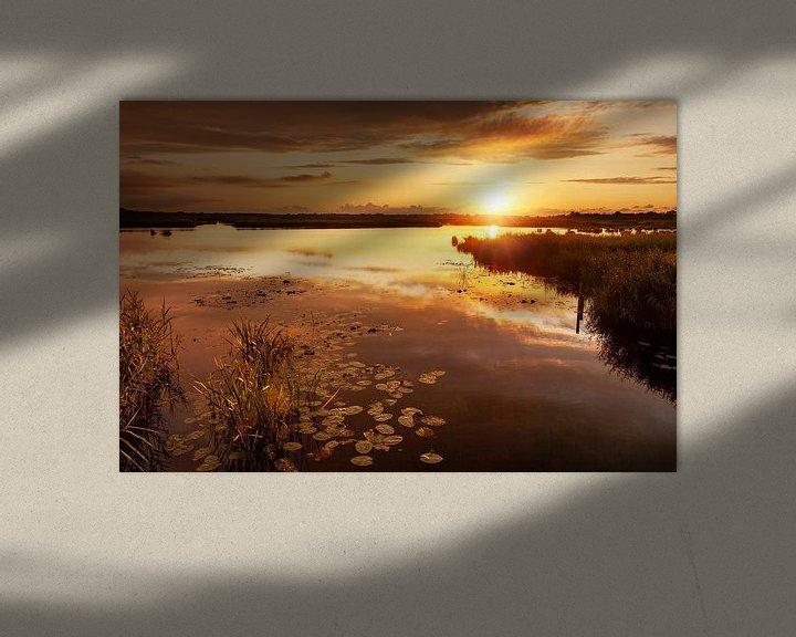 Sfeerimpressie: Gouden Zonsondergang De Onlanden van R Smallenbroek