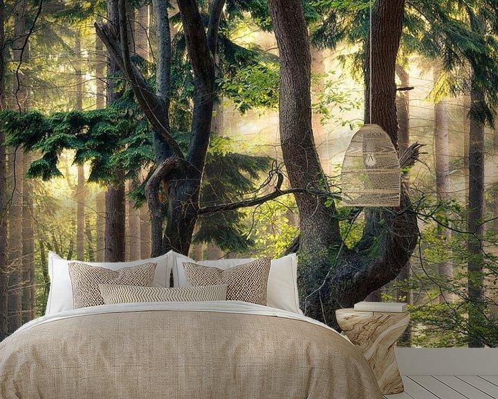 Sfeerimpressie behang: De oude boom van Edwin Mooijaart