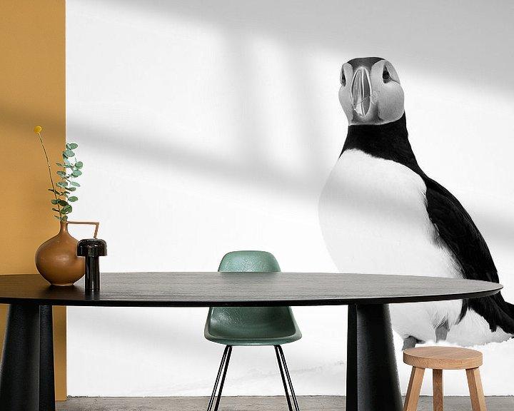 Beispiel fototapete: Schwarz-Weiß-Aufnahme eines Papageientauchers von AGAMI Photo Agency