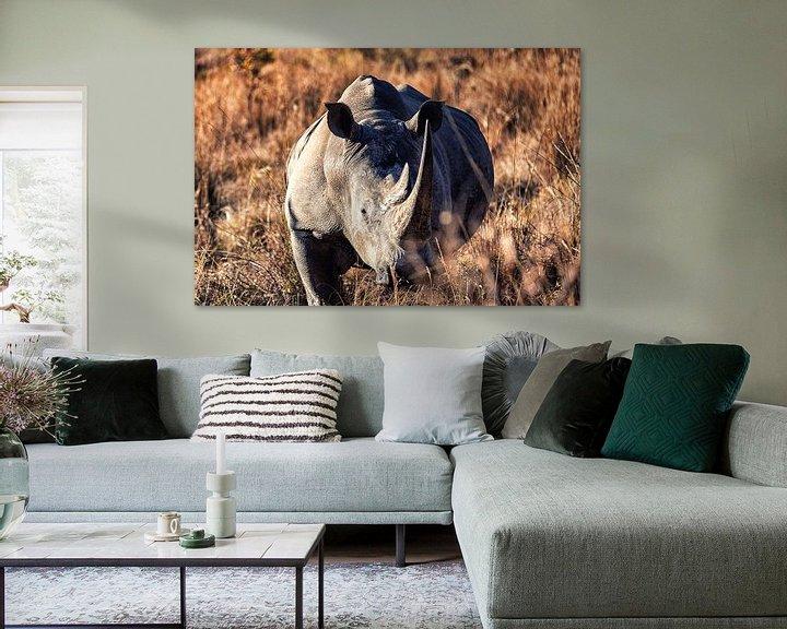 Beispiel: Breitmaulnashorn von Aad Clemens