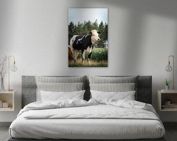 Kuh auf der Wiese von Kashja Neels