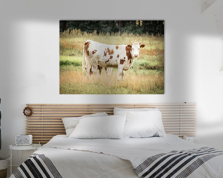 Beispiel: Kuh auf der Wiese von Kashja Neels