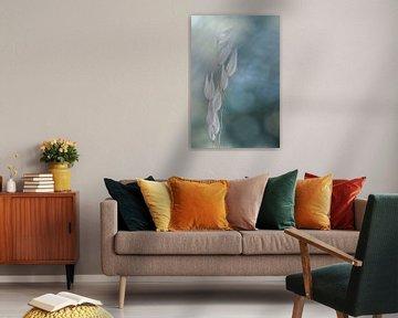 Serenity van Christl Deckx