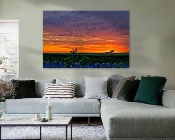 Die blitzelnde Sonne am Brombachsee von Roith Fotografie