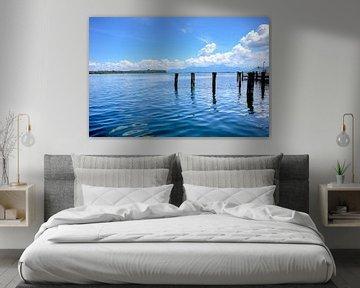 Ufer am Chiemsee von Roith Fotografie