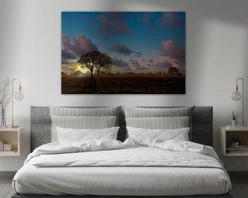 Sonnenaufgang bei Lentevreugd Wassenaar von Robert Jan Smit