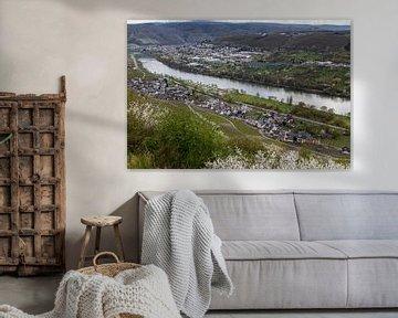 Panoramisch uitzicht op het Moezeldal met de dorpen Bernkastel-Kues en Graach van Reiner Conrad