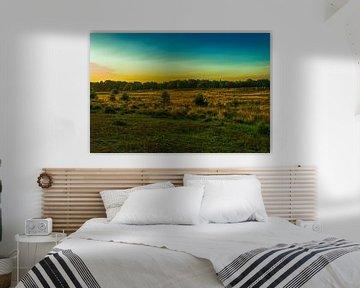 Sonnenaufgang an der Kampina von Stephan Krabbendam