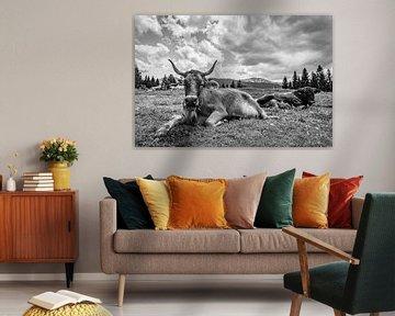 Kühe auf der Alm von MindScape Photography