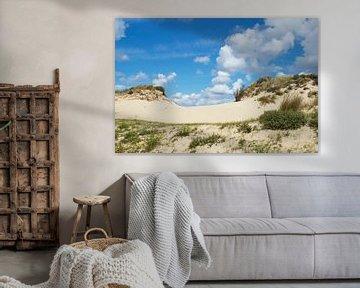 Hollandse duinen bij Wassenaar (Nederland) van Birgitte Bergman