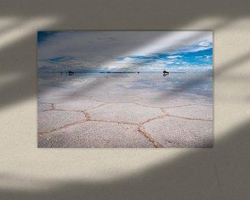 Hexagons op de zoutvlakte van Jelmer Laernoes