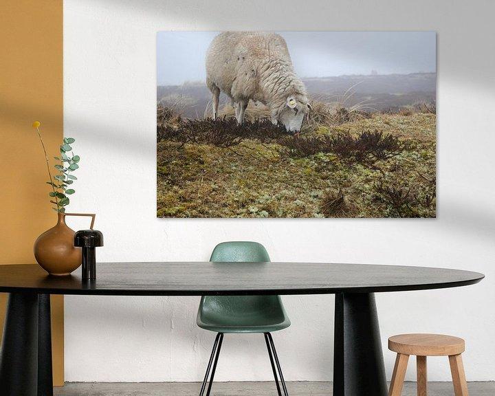 Beispiel: Schaf von Florian Kampes