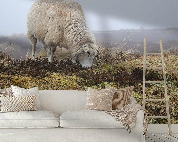 Beispiel fototapete: Schaf von Florian Kampes