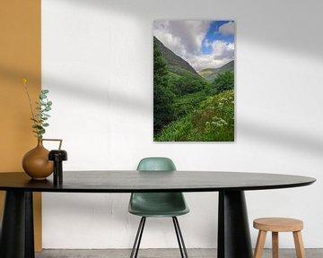 Schottische Highlands von Dirk van Egmond